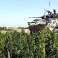 Photo prise par un soldat canadien anonyme en octobre 2006. Source: Reuters