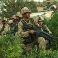 Soldats de l'OTAN dans un champ de cannabis