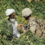 Intervention canadienne en Afghanistan