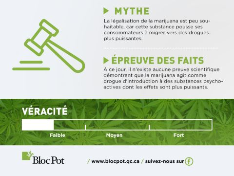Le cannabis n'est pas une drogue d'introduction contrairement à l'alcool
