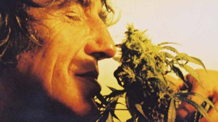 Mr. Nice humant une fleur :)