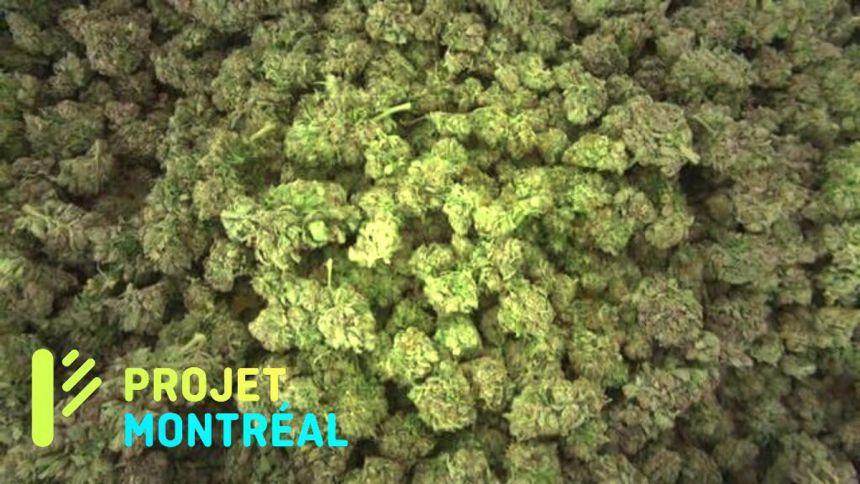 Projet Montréal : Projet cannabis ?
