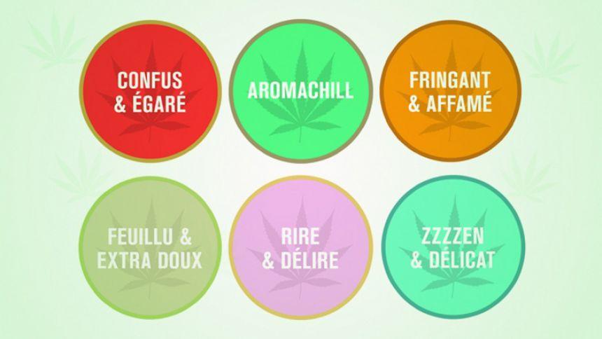 Musique Plus a imaginé des pastilles de goûts pour le cannabis