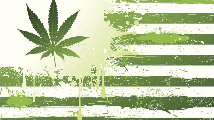 Le cannabis aux urnes – Résultats des élections de mi-mandat aux États-Unis